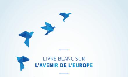 Les documents de réflexion sur l'avenir de l'Europe sont à la Maison de l'Europe de Paris !