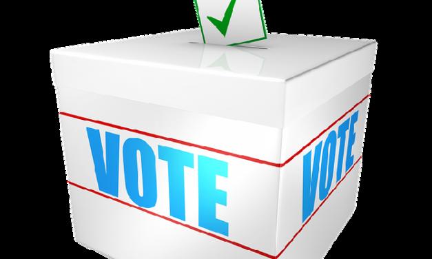 Information sur le vote en prison