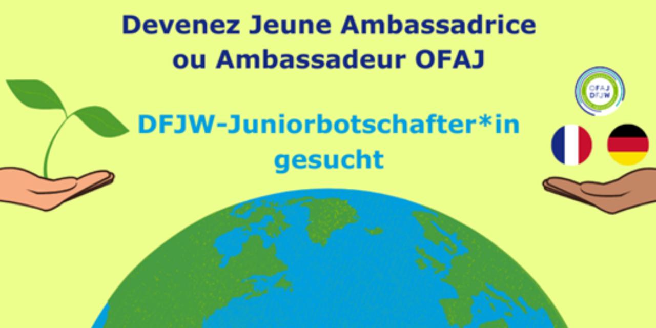 L'OFAJ recherche 100 jeunes bénévoles en France et en Allemagne !