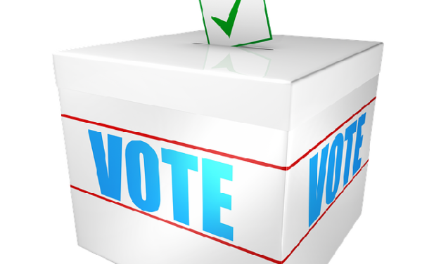 Sessions de sensibilisation au vote auprès de détenus 2019