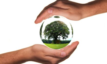 La Commission propose une loi européenne sur le climat et lance une consultation sur le pacte européen