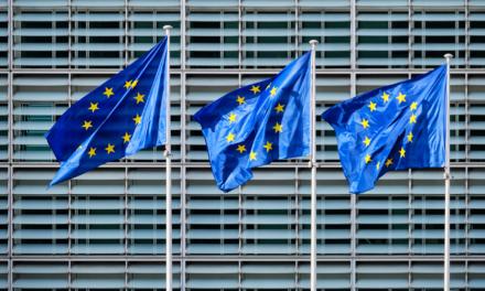 Conférence sur le futur de l'Europe : la MEP désignée HUB en Île-de-France