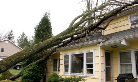 La Commission propose 59,3 millions d'euros pour les dommages suite à la tempête Alex en France