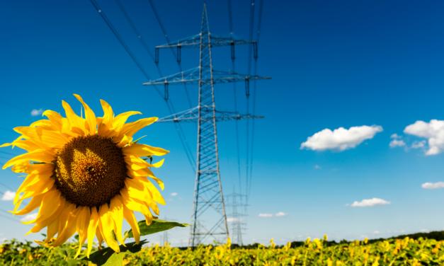 """Myriam Maestroni avec Michel Derdevet """"Changer les câbles de nos réseaux électriques pourrait drastiquement réduire notre consommation d'électricité"""""""