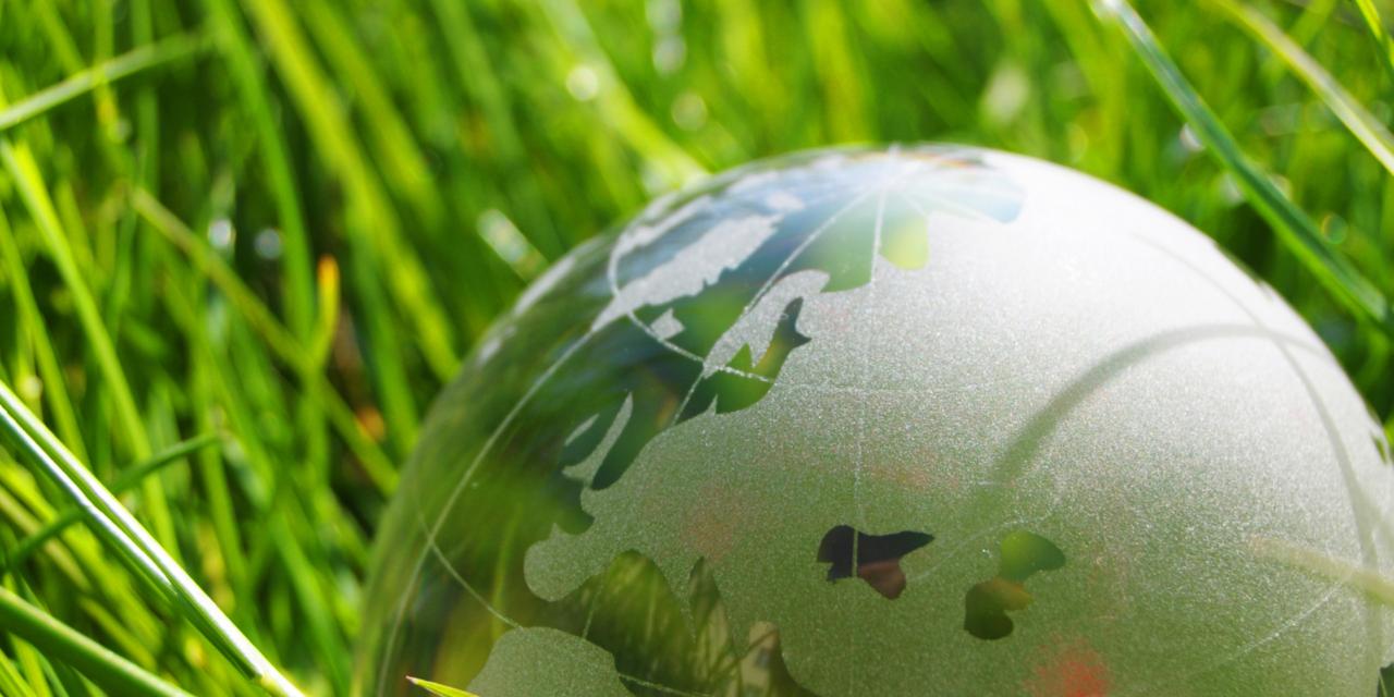 Biodiversité : Renforcement de la coopération UE/Chine en amont de la COP 15