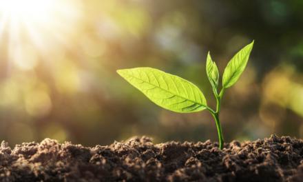 La Commission sollicite des projets dans le cadre de l'Alliance européenne pour un hydrogène propre
