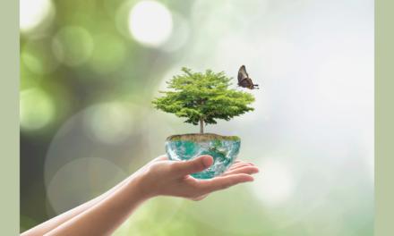 Programme LIFE : l'UE honore des projets inspirants en faveur de la nature, de l'environnement et du climat