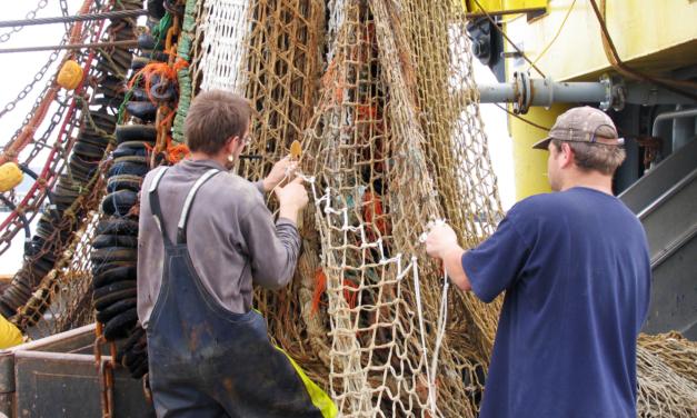 Pêche durable : la Commission fait le point sur l'avancée des progrès de l'UE et lance une consultation sur les possibilités de pêche pour 2022