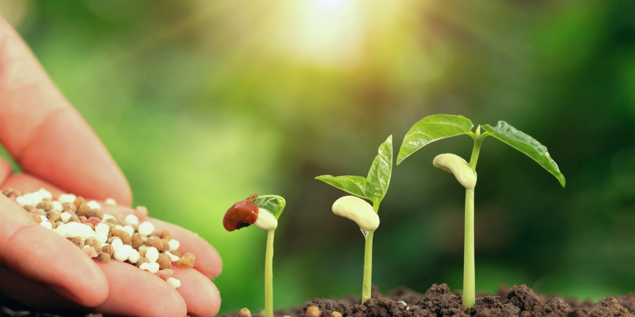Accord politique sur la nouvelle PAC: une politique plus équitable, plus verte et plus souple