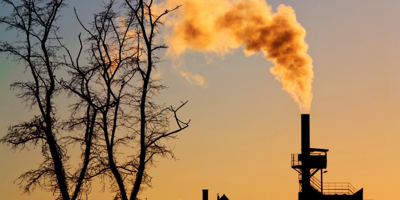 L'UE collabore avec d'autres pays de l'OCDE pour proposer l'interdiction des crédits à l'exportation pour les projets d'électricité au charbon