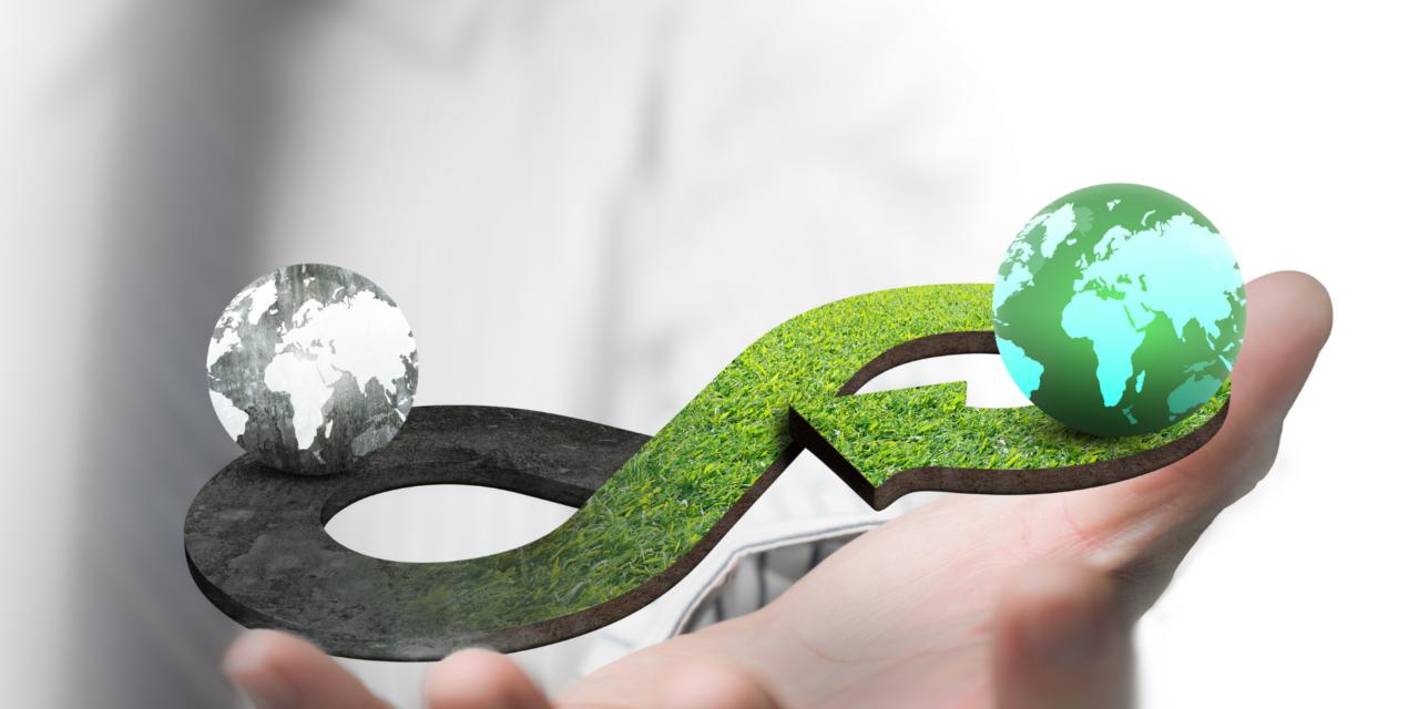 Première réunion de haut niveau de l'Alliance mondiale pour une économie circulaire et une utilisation efficace des ressources
