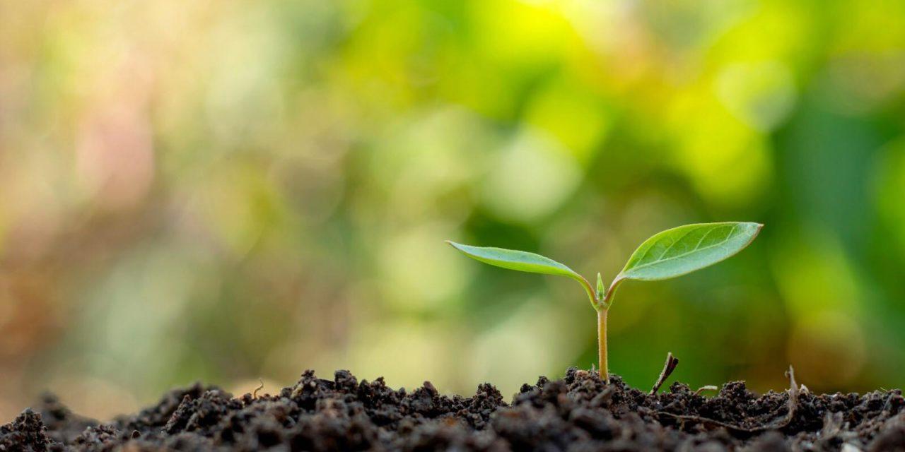 Next GenerationEU : La Commission européenne lance avec succès la première émission d'obligations vertes pour financer une reprise durable